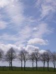 Wicked skies