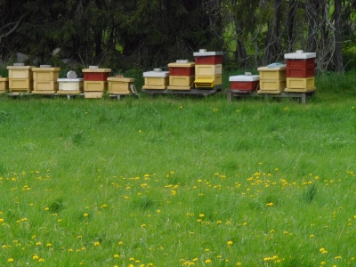 Even the bee hives are painted red for brick and yellow for stone