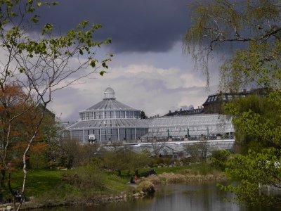 Botanical Gardens Glasshouse - we have been spoilt by RHS Wisely and Kew Gardens