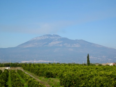 Etna and orange groves